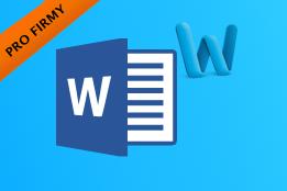 Firemní školení: Microsoft Word